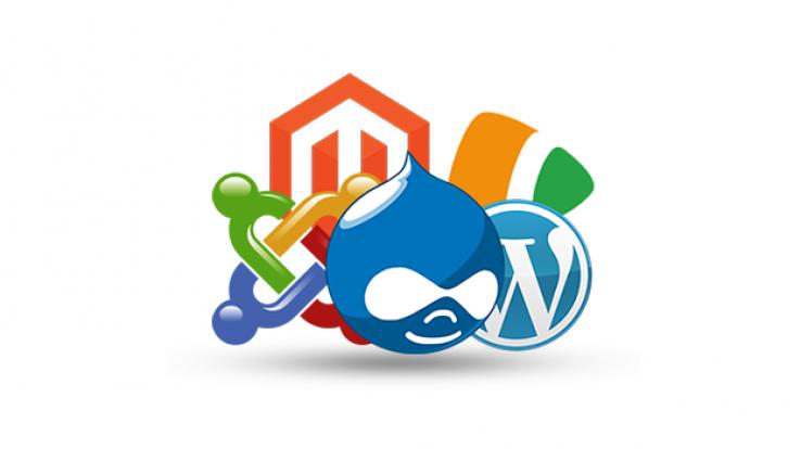 WordPress, Joomla, Drupal, Magento: qual o melhor CMS para seu site?