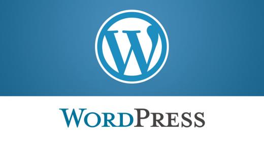 Hospedagem wordpress: o que avaliar na hora de escolher uma